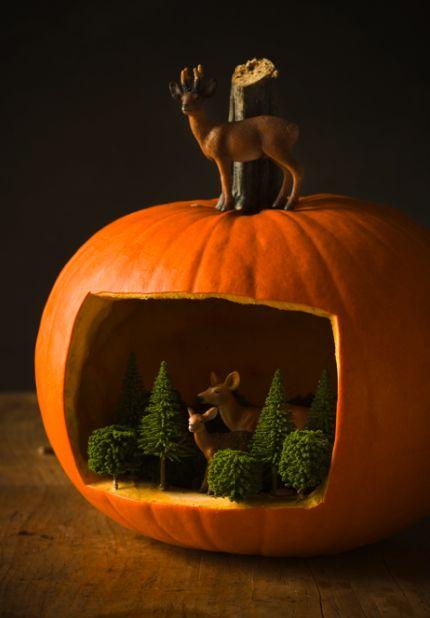 Halloween Pumpkin Woodland Scene : www.theMagicOnions.com