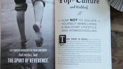 Discovering Waldorf : The Waldorf Homeschool Handbook : www.theMagicOnions.com