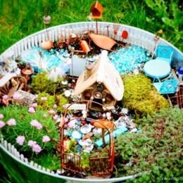 Fairy Garden Feature : ONE