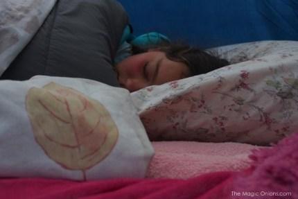 Camping at Big Sur, CA - The Magic Onions.com