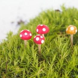 Tutorial : Make Mini Toadstools for your Fairy Garden