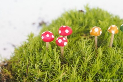 Tutorial : Make Mini Todstools for your Fairy Garden : www.themagicOnions.com