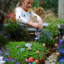 Fairy Garden Contest : ENTER now.