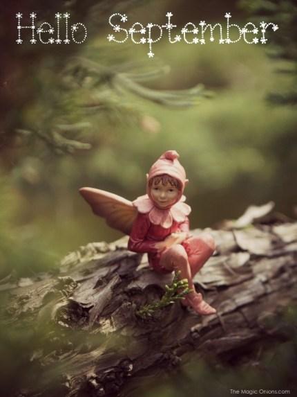 Fairy : The Magic Onions Blog : www.theMagicOnions.com