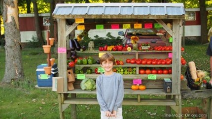 Photo of an Organic Fruit and Vegetable Stand : www.theMagicOnions.com