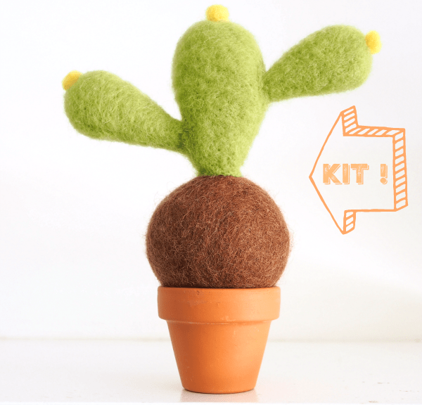 DIY Needle Felting Kit, Cactus Succulent Kit : www.theMagicOnions.com/shop