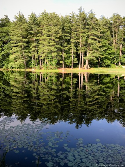 Photo of lake in New Hampshire