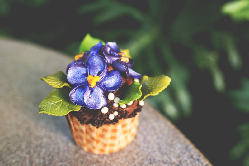 African Violet Cupcake at The Mara at Disney's Animal Kingdom Lodge