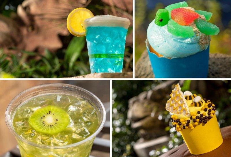 Crave the Wave Cocktail, Honey Bee Cupcake, Sea Turtle Cupcake and Kiwi Margarita.