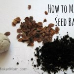 Seed Balls: Random Acts of Wildflowers