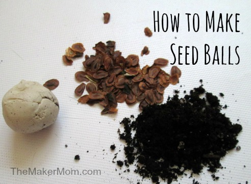How to make seed balls on www.themakermom.com