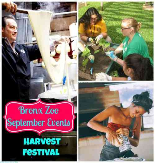 September Events at the Bronx Zoo