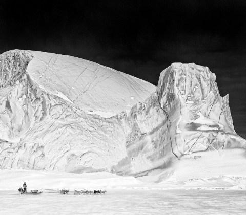 Carsten Egevang ® Scoresbysund, East Greenland, 2011
