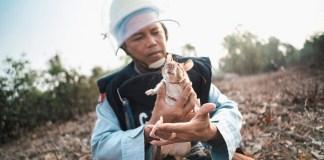A rat in deminer's arms before starting to work on minefield © Simon Guillemin - festival della fotografia etica