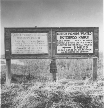Near Fresno, California. Employment signs, 1933