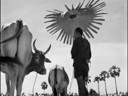 Werner Bischof, Cambodia, 1952 © Werner Bischof / Magnum Photos