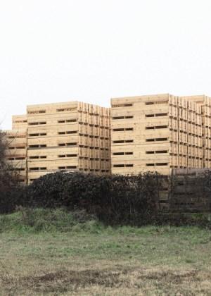 corso Biennale in Fotografia a Bologna