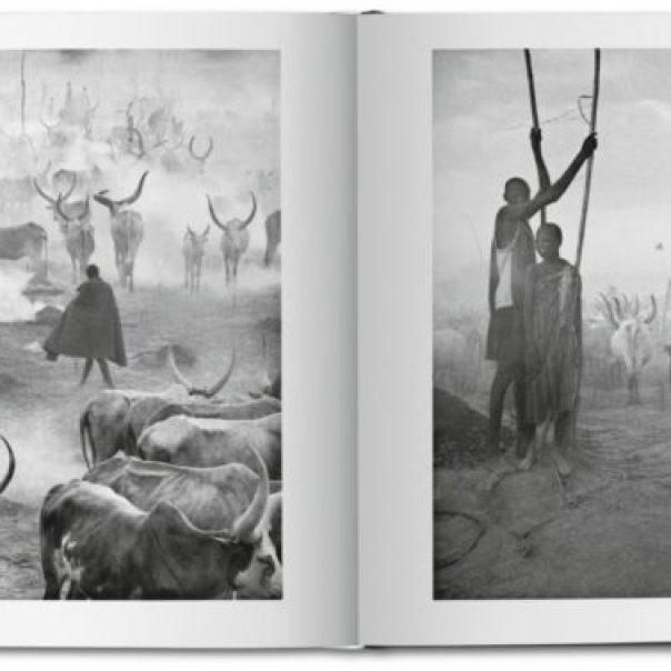 Africa Salgado libro