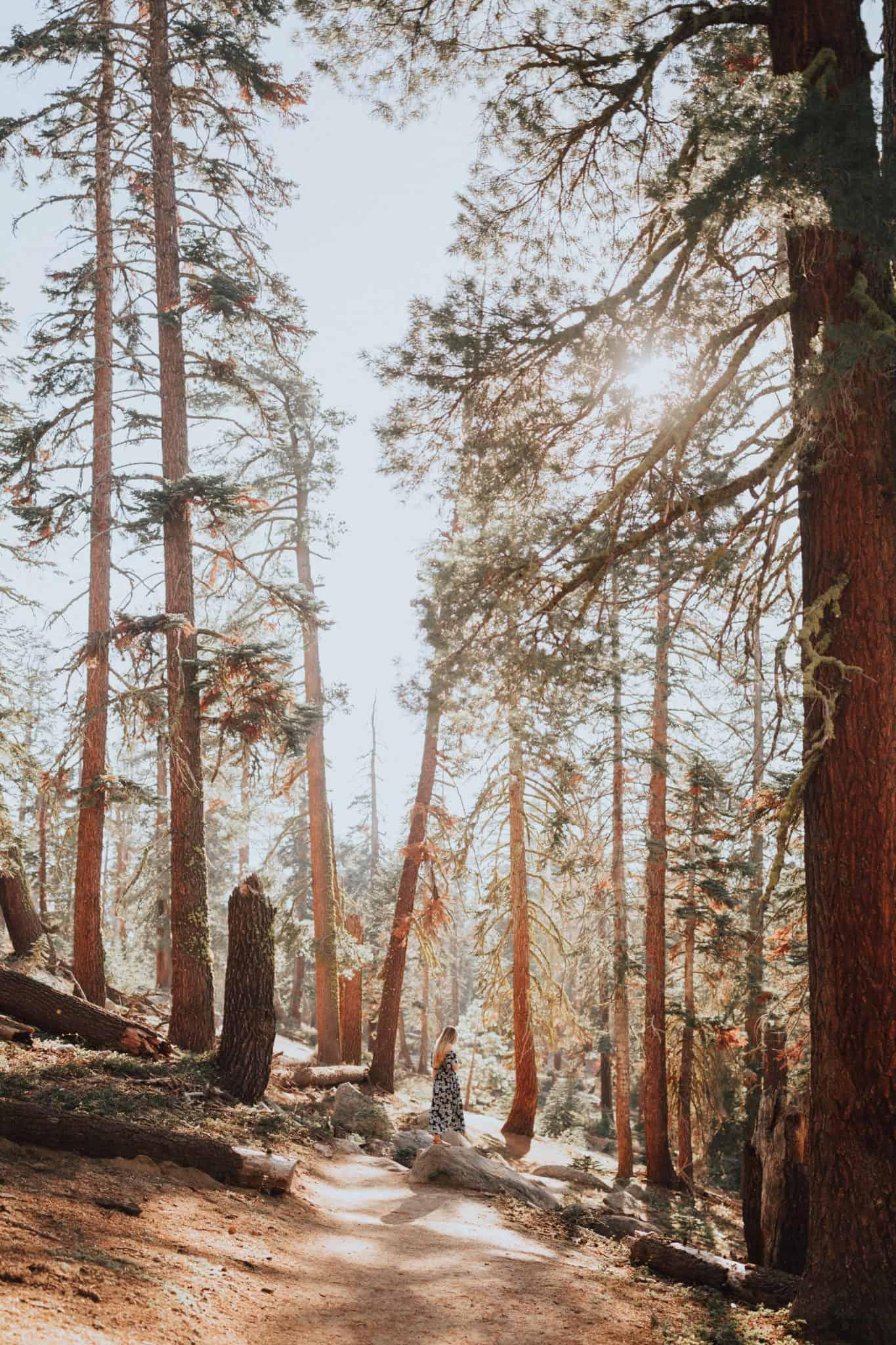 Taft Point, Yosemite National Park TheMandagies.com @themandagies