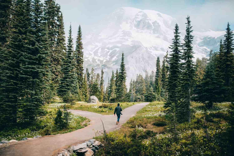 Niqually Vista Loop - Mount Rainier National Park - TheMandagies.com