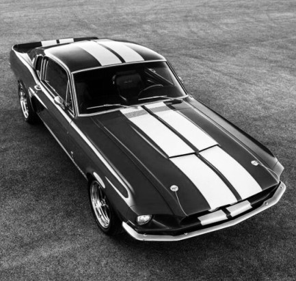 mustang in black and white