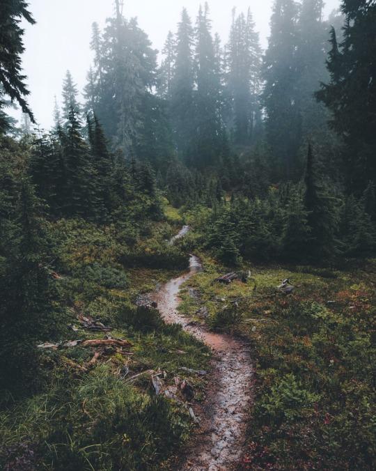 pnw trail