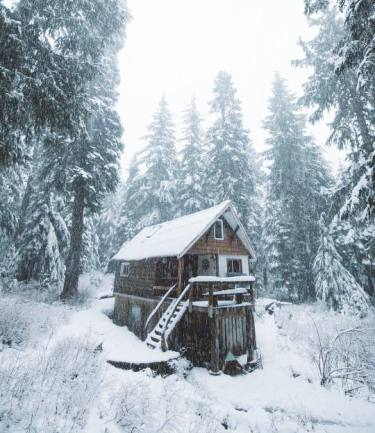 tucked away cabin in the snow