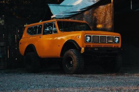 orange scout