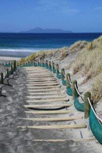 path leading to beach
