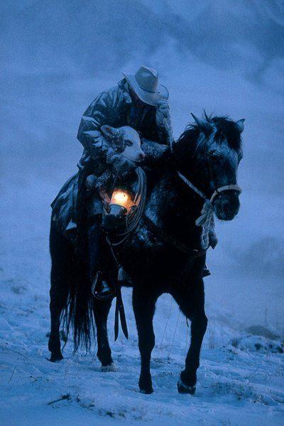 cowboy rescue in snow