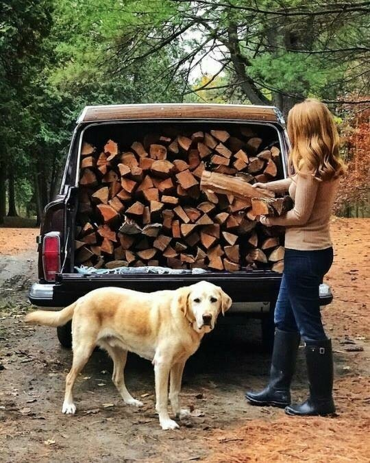 woman loading logs into back of truck