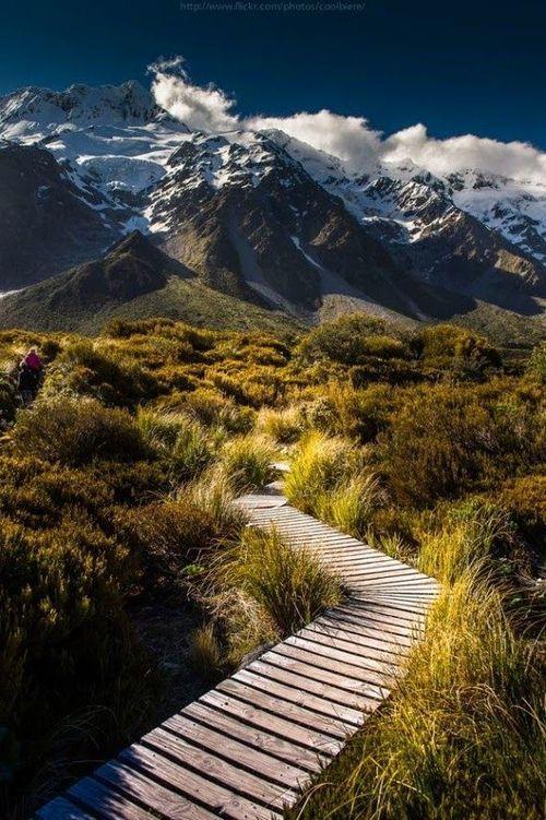 path through mountain field