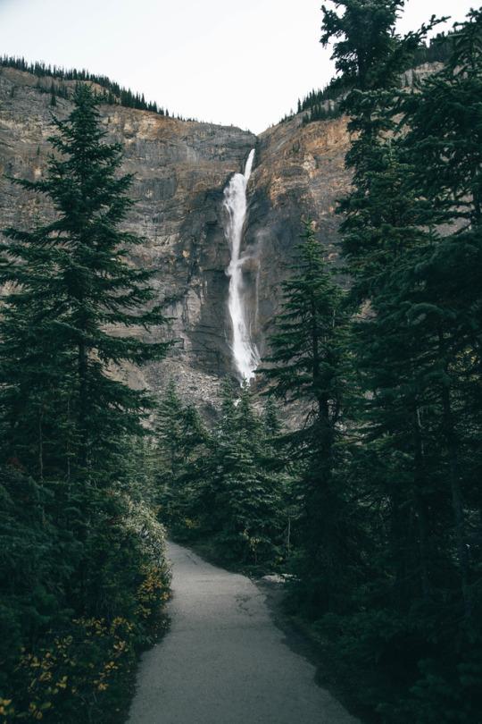 waterfall above walkway