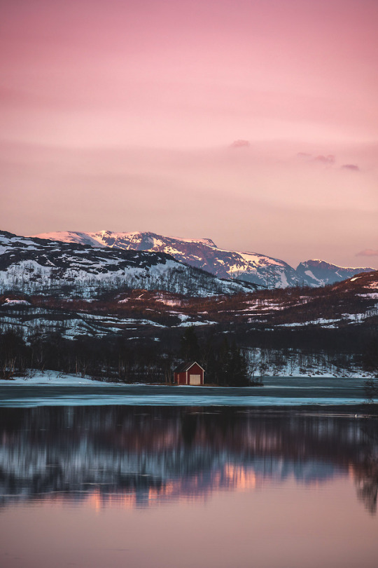solitary cabin near lake
