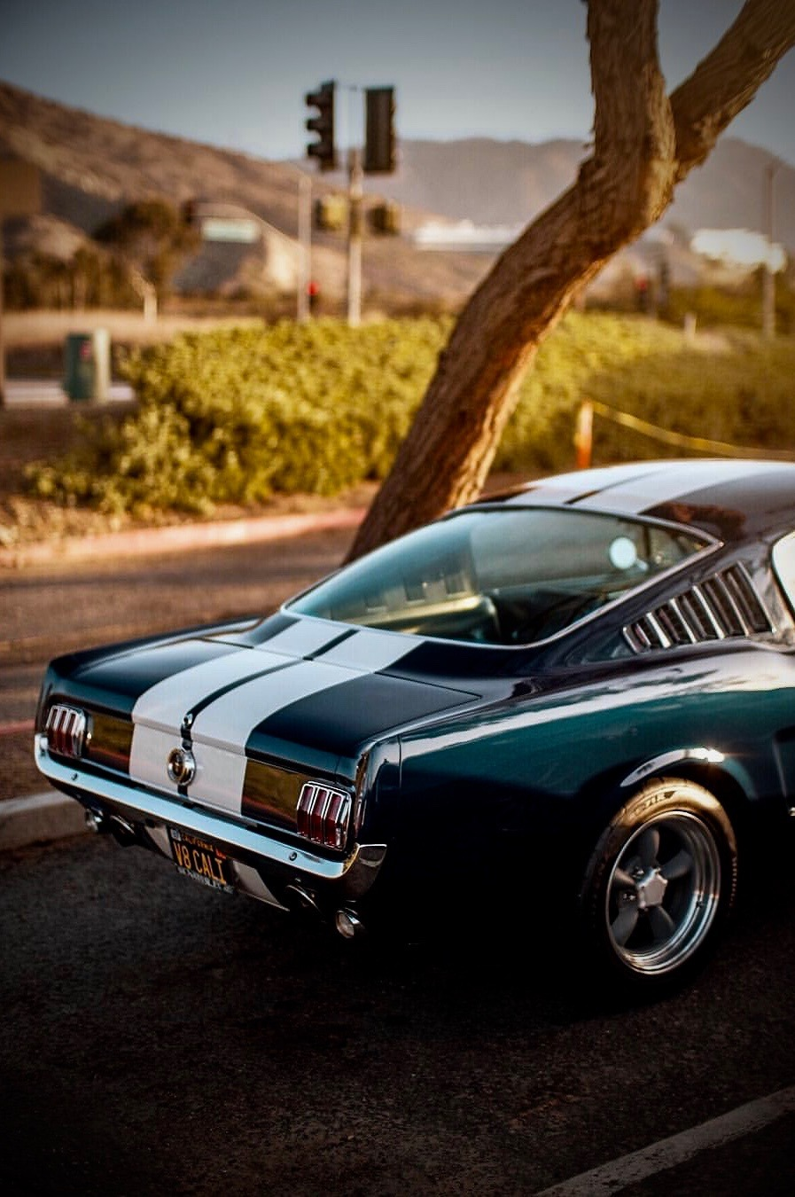 fastback mustang