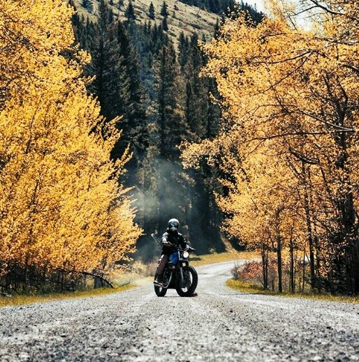 man on motorcycle in fall