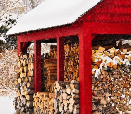 red wood shed with wood