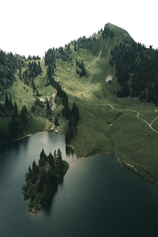 mountain lake surrounded by green mountains