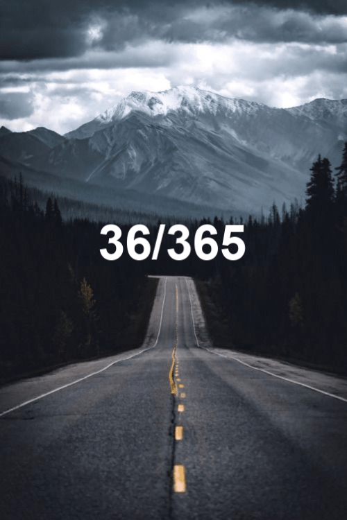 day 36 of the year 2019