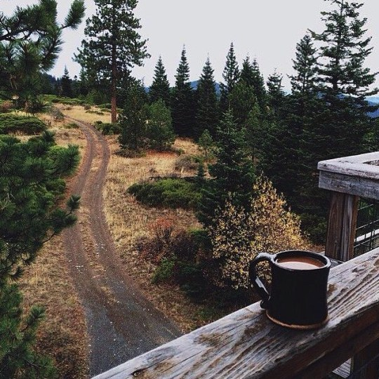 cup of coffee on porch of mountain cabin