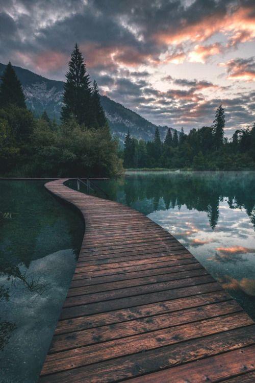 wooden path across lake