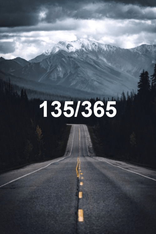day 135 of the year 2019