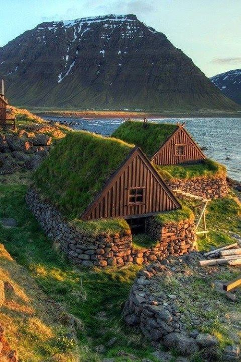 grass roof cabin huts