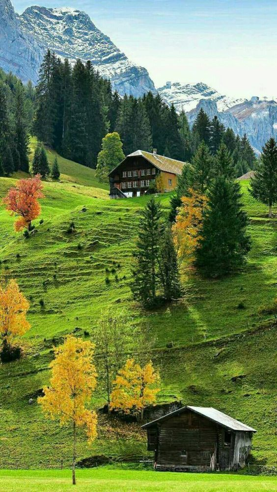 mountain scene inspiration