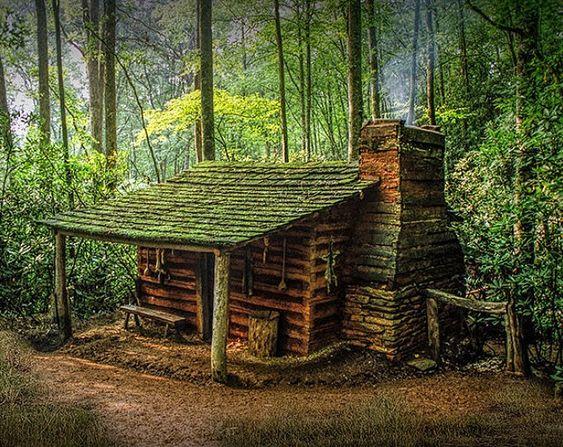 comfy little cabin