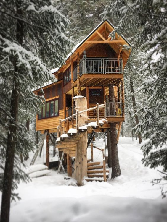 elevated cabin