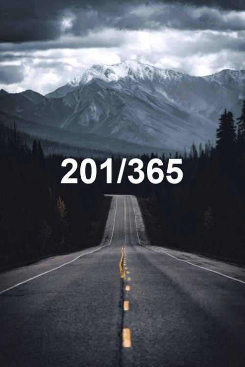 day 201 of the year 2019