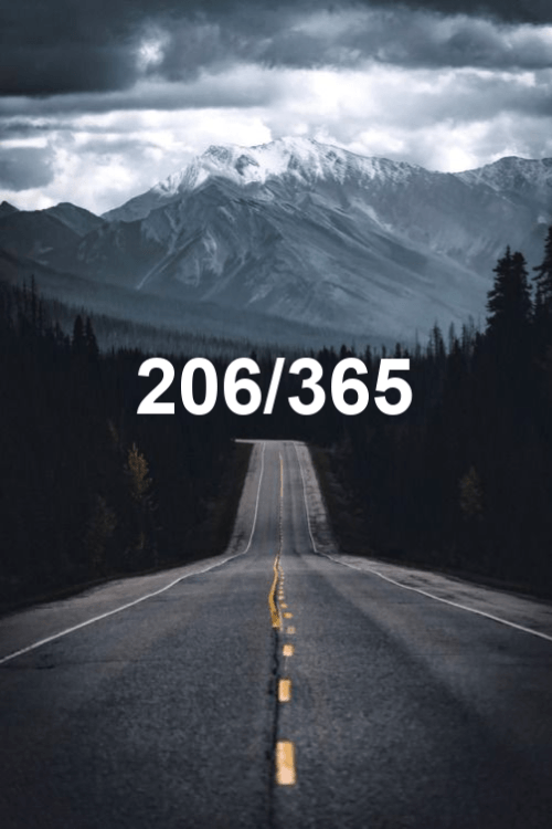 day 206 of the year 2019