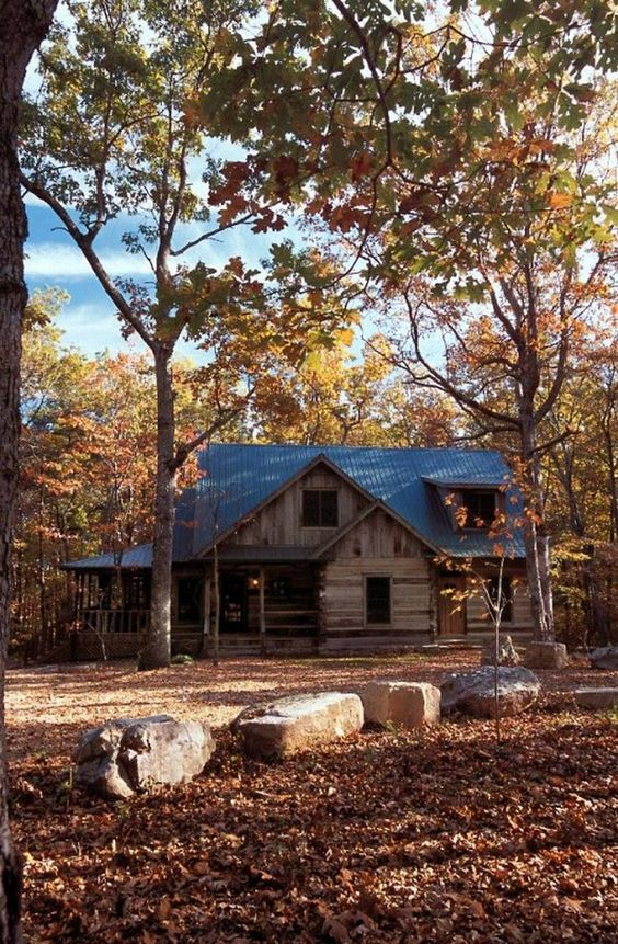 cabin home in the woods