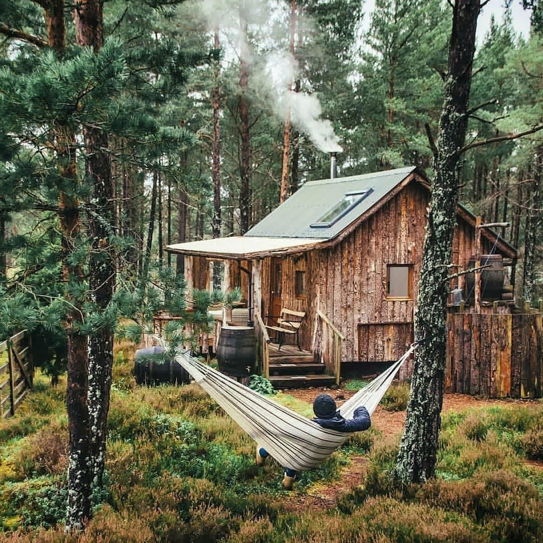 relaxing int he woods